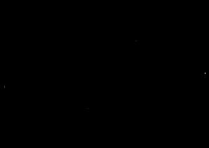 לוגו מגנוליה